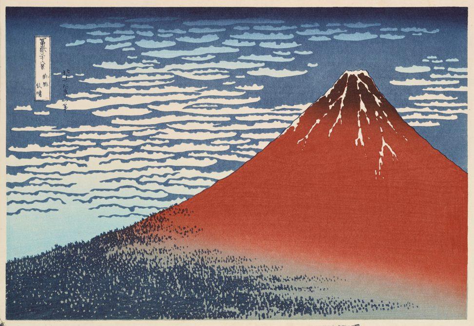 Fuji rot